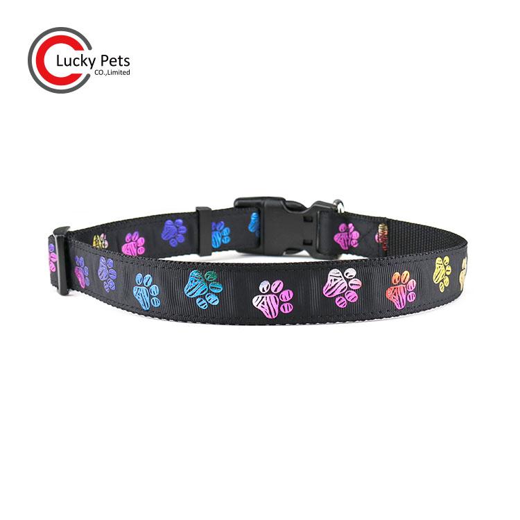 paw printed dog collar