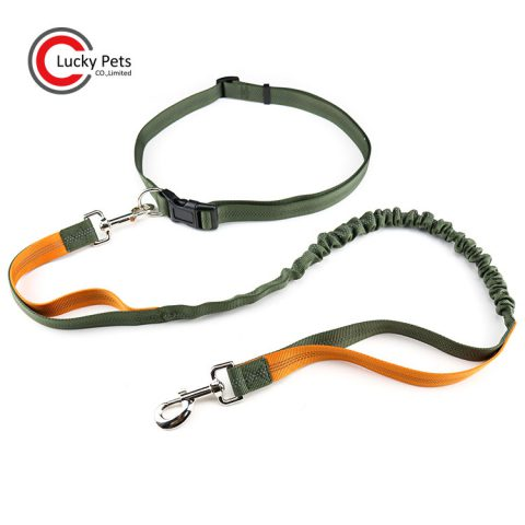 hands free pet leash