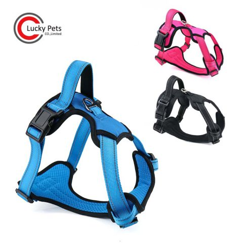 easy walk harness for dog